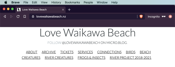 Love Waikawa Beach blog before the banner.